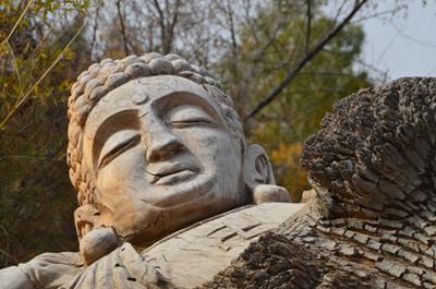 新疆阿克苏胡杨根雕佛像神像木雕雕塑